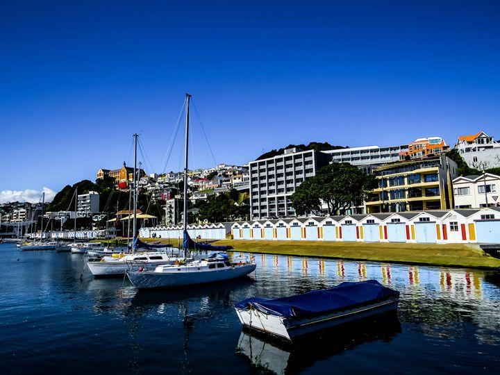 Wellington harbour - teodoramotateanu