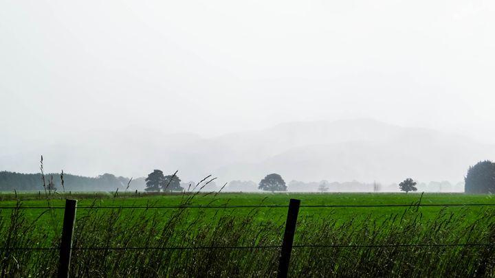 rain - teodoramotateanu