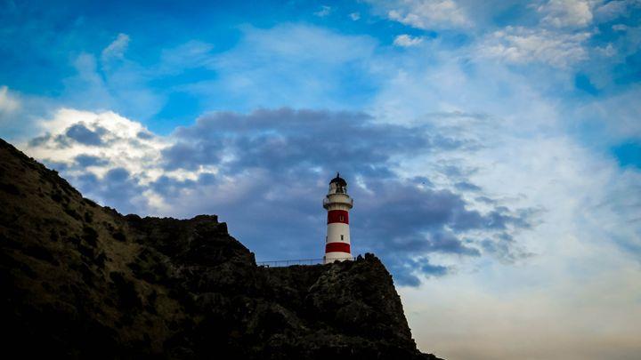 Castlepoint lighthouse - teodoramotateanu