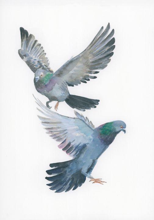 doves or pigeons? - ElineMoos