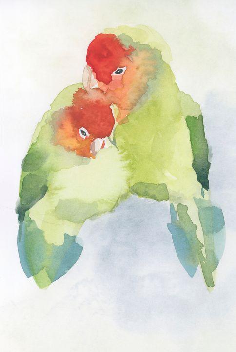 Dwerg papagaai - ElineMoos