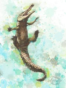 Gator #1