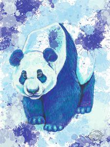 Panda in Blue #2