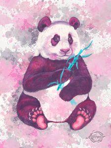 Panda in Pink