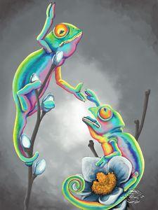 Cool Chameleons #1