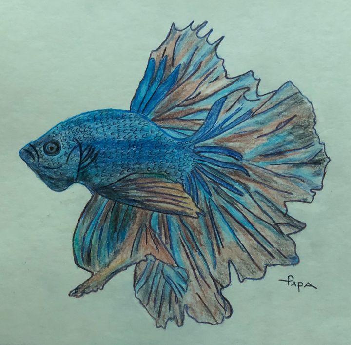 Half moon betta fish - Art by Sam Papa