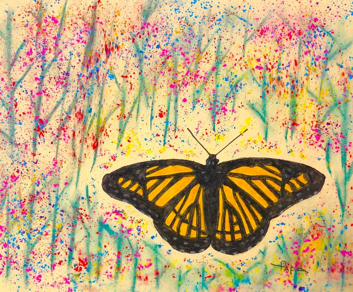 Monarch butterfly - Art by Sam Papa