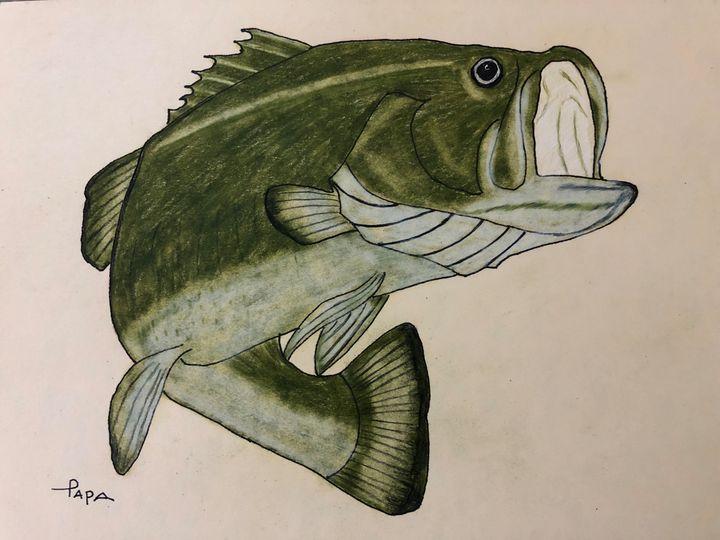 Large Mouth Bass - Art by Sam Papa