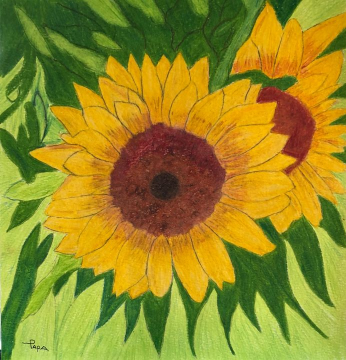 Sunflower - Art by Sam Papa