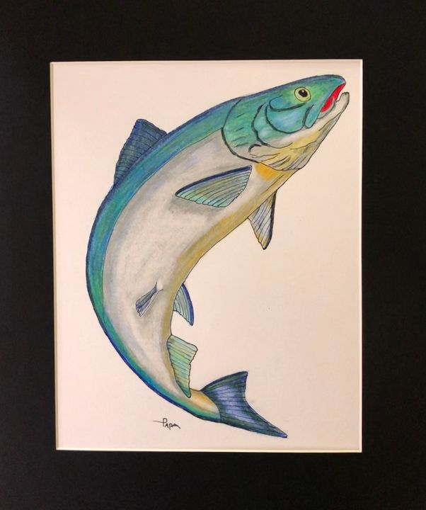 King Salmon - Art by Sam Papa