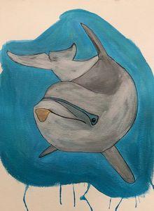 A Dolphin kiss