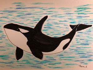 The mighty Orca