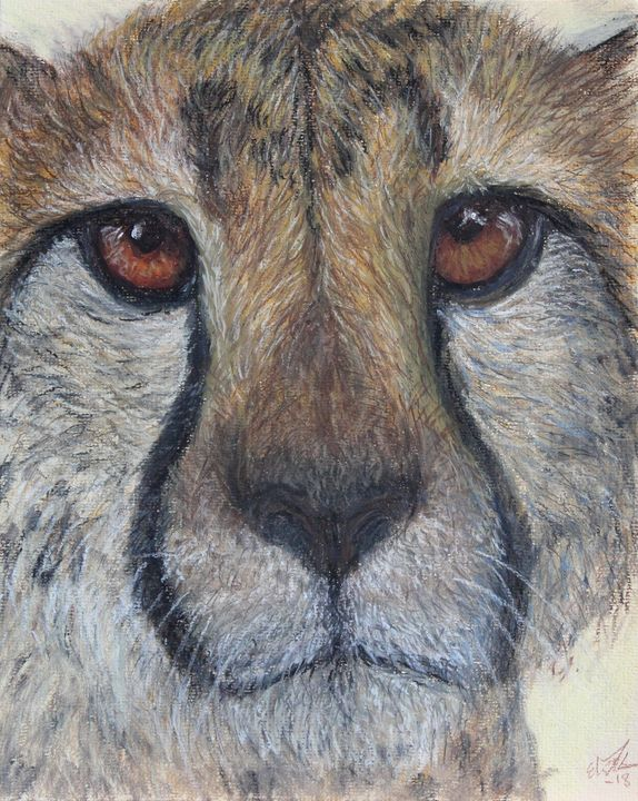 Cheetah - Elin Johnsen Art