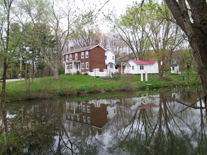 The reflection - Bunni's Originals