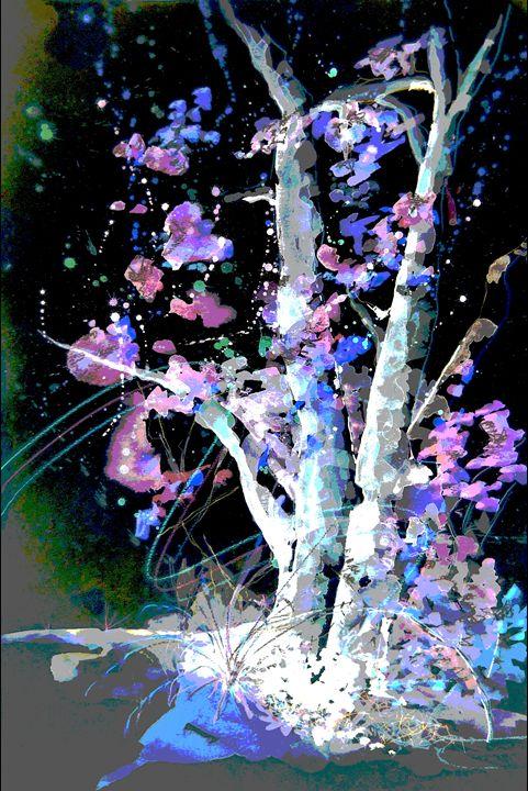 Sedona Tree Magic - Sunshower Art