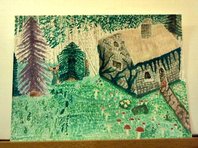 Aspen Cottage - Visuals of a Medicine Woman