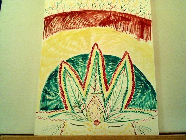 Jamaican Colorado - Visuals of a Medicine Woman