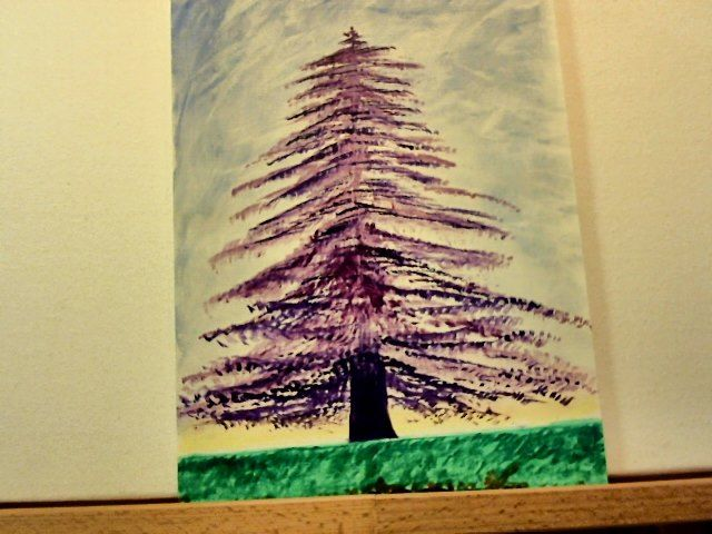 Purple Pine - Visuals of a Medicine Woman