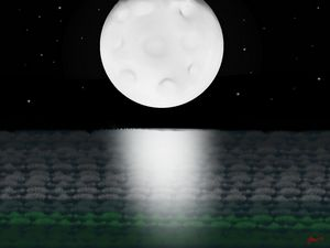 Moonlight field
