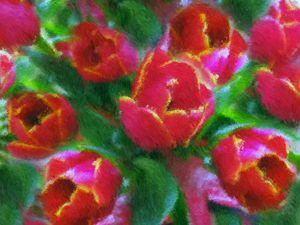 Tulipani impressionisti