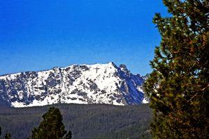 the Bitterroot Mountains