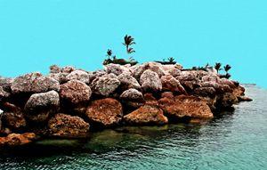 Bahamas Castaway