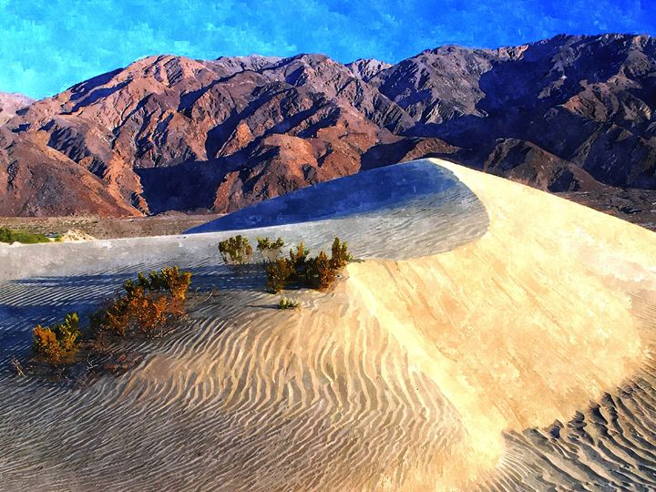 DESERT - Larry Stolle