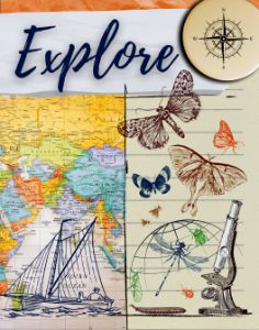 Explore - Tina Mitchell Art