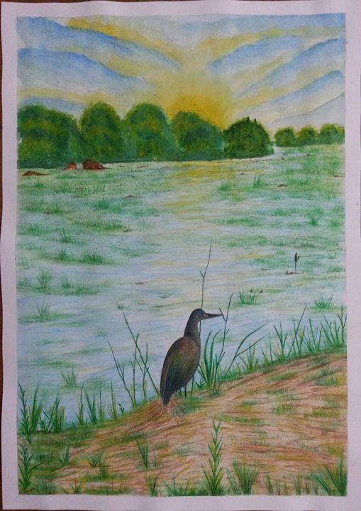 Landscape - Sunset - Vikram Tuli Artwork