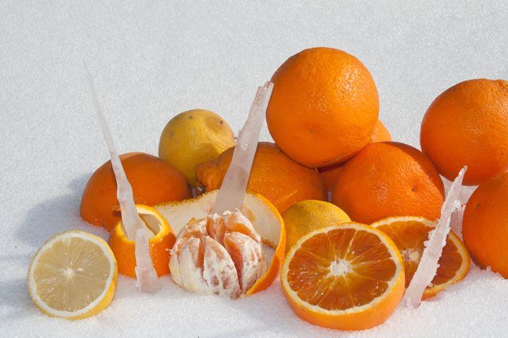 oranges and lemons on snow - brunopaolobenedetti