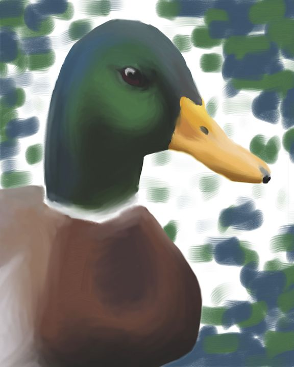 The Duck - Jeanne Fallon