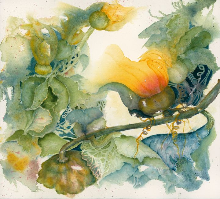 Blooming Squash - Wineries & Landscapes by Grace Fong
