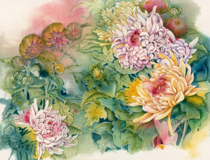 Cozy Chrysanthemums - Wineries & Landscapes by Grace Fong