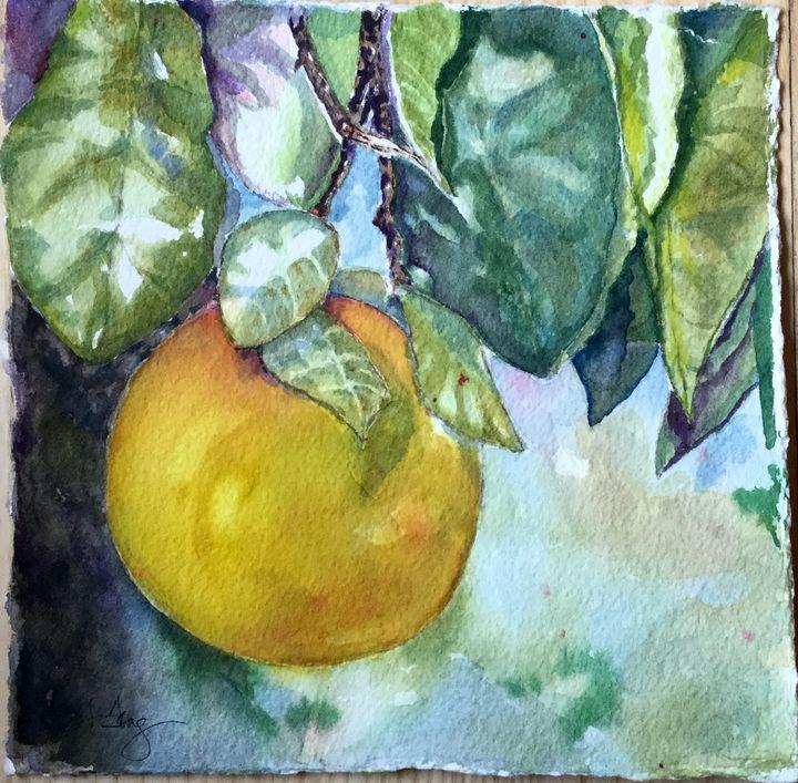 Grapefruit - Wineries & Landscapes by Grace Fong