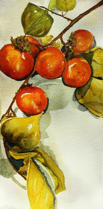 Persimmons by Grace Fong - Wineries & Landscapes by Grace Fong