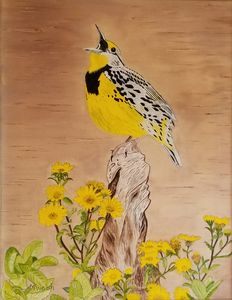 Meadowlark - Marilyn Welsh