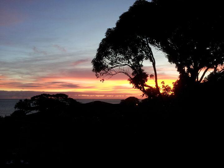 Sunrise through Mango - Boogiba