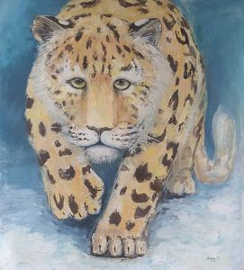 Ferst snow, leopard.