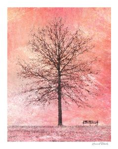 Tree & Bench Pink signed
