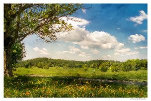 Summer Day Valley Forge