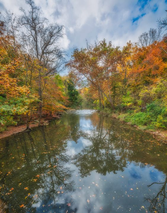 Wissahickon Creek 10.23.20G - Howard Roberts Photography