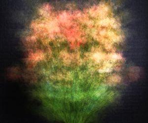 Impressionistic Flowers 01.01.21