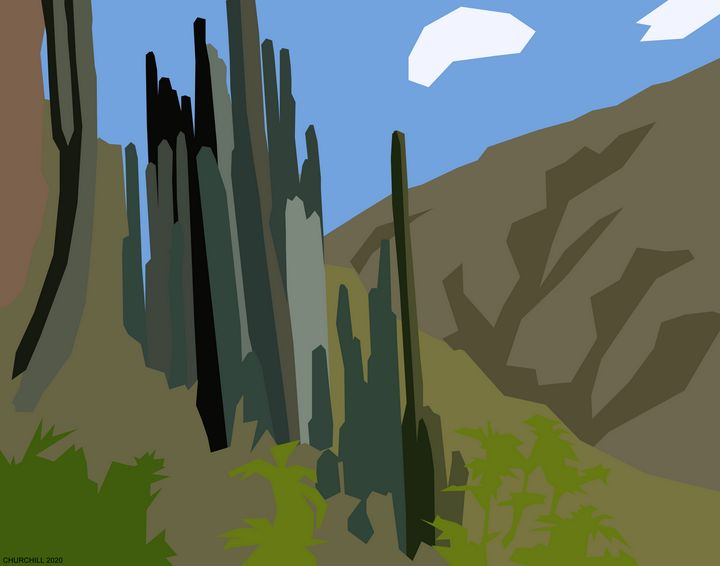 Cactus Plants - John Churchill