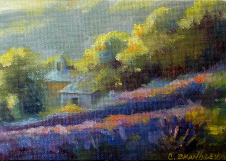 Colors of Provence - Chris Brandley Fine Art