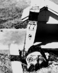 Not Forgotten - Steven Perdikis