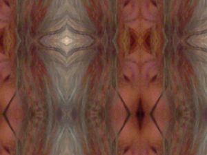 Body Morph