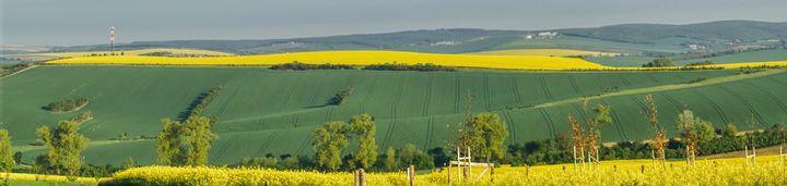spring panorama of Moravia - Jarek Witkowski gallery