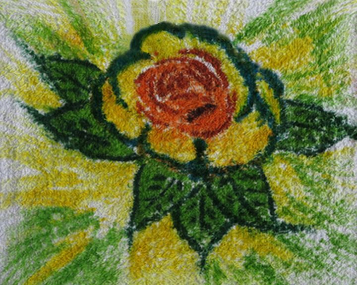 Rose on a Washcloth - TimPeterson