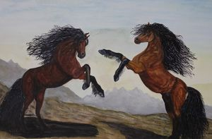 Wild Horses Battling