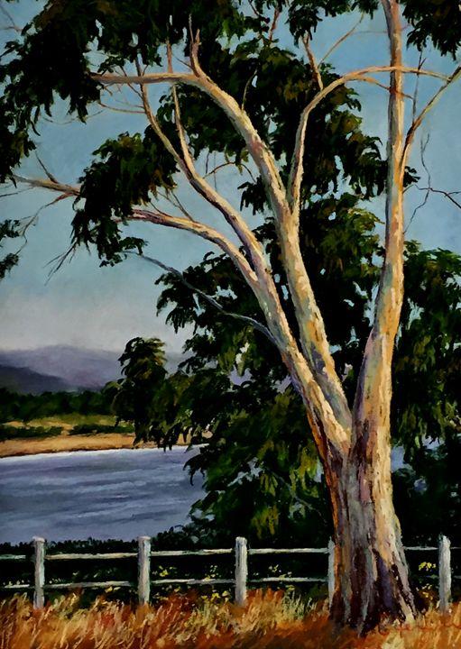 Pacifice Overlook - candice ferguson fine art